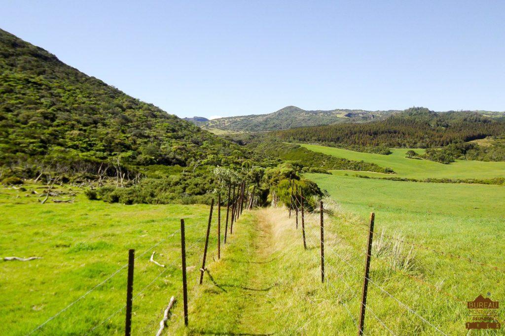 randonnée réunion trek agence GRR2 diagonale traversée plaine des cafres paturages