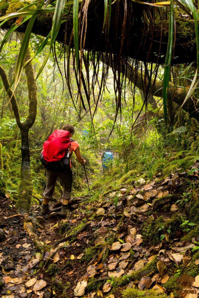 randonnée réunion trek agence GRR2 diagonale traversée volcan fournaise puys ramond foc-foc