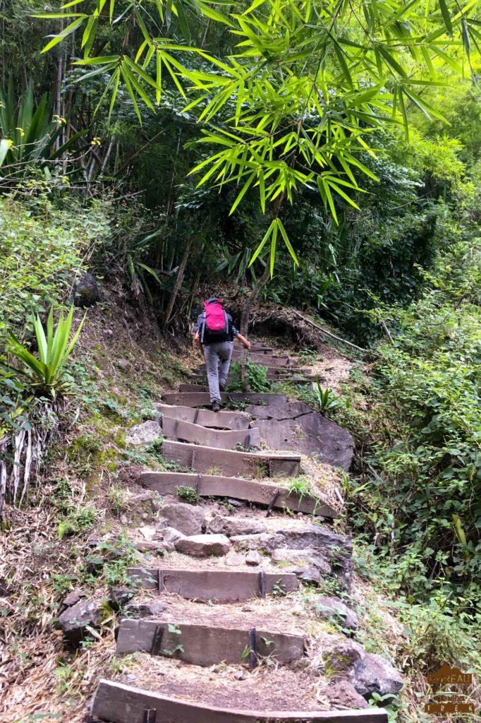 En chemin dans Mafate randonneur bambou guide 974 trek