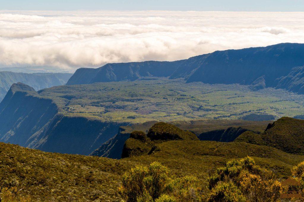 La forêt de Bélouve, le Cap Anglais mazerin trek réunion guide 974
