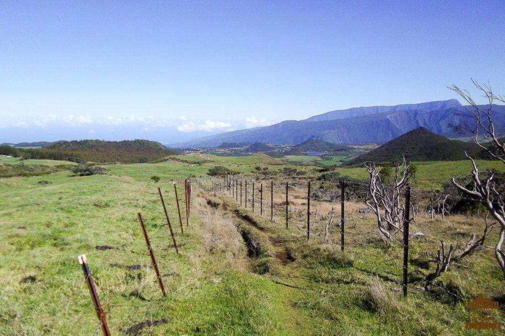 Pâturages de la Plaine des Cafres sentier réunion trek guide 974