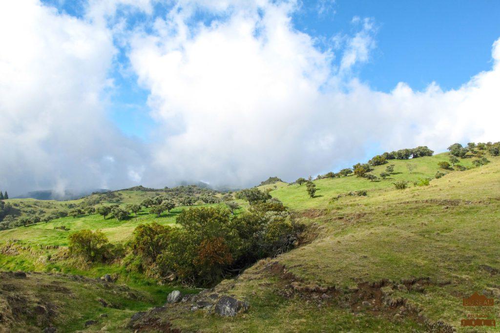 Pâturages, la Plaine des Cafres volcan fournaise réunion trek guide